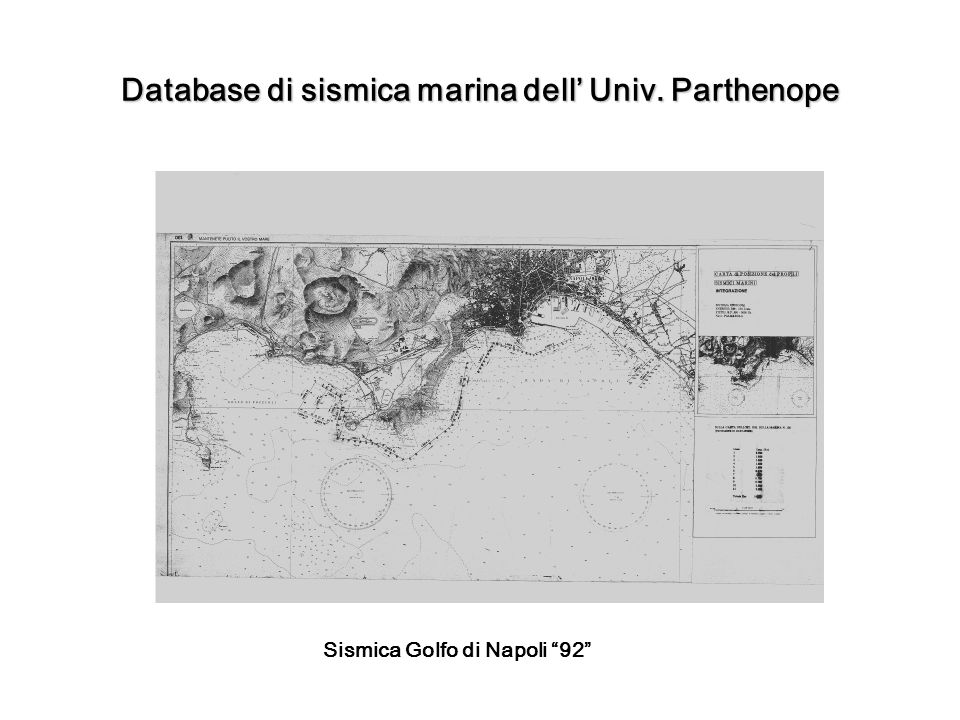 Database di sismica marina dell' Univ. Parthenope
