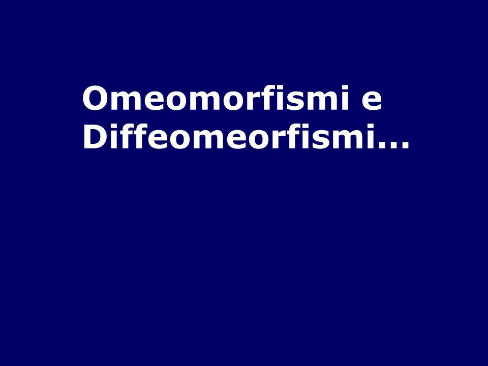 Omeomorfismi e Diffeomeorfismi...
