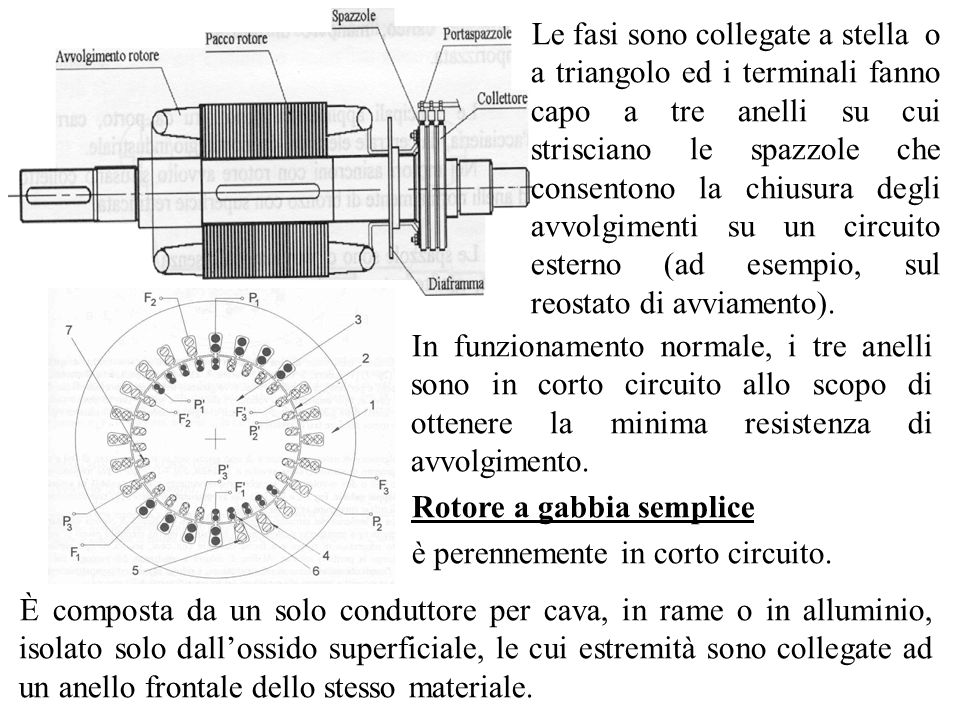 Le fasi sono collegate a stella o a triangolo ed i terminali fanno capo a tre anelli su cui strisciano le spazzole che consentono la chiusura degli avvolgimenti su un circuito esterno (ad esempio, sul reostato di avviamento).