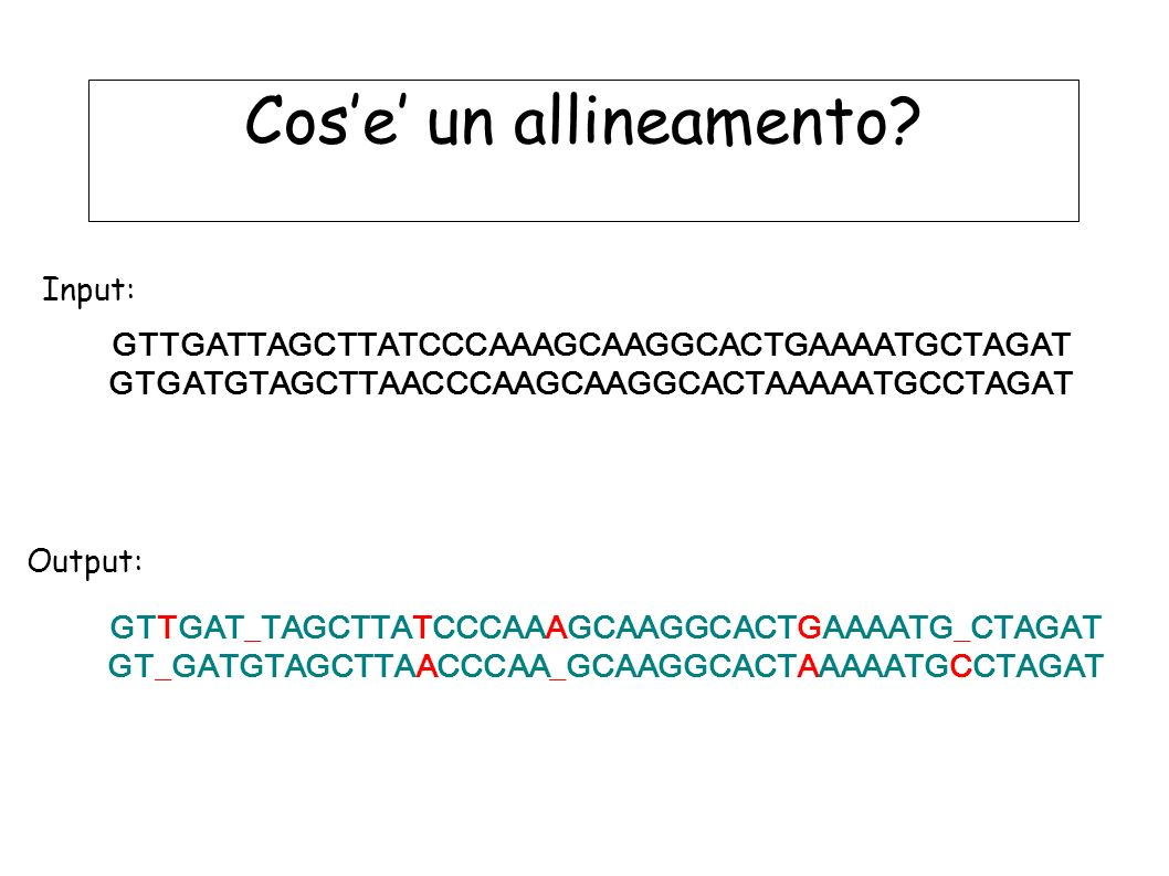 Cos'e' un allineamento