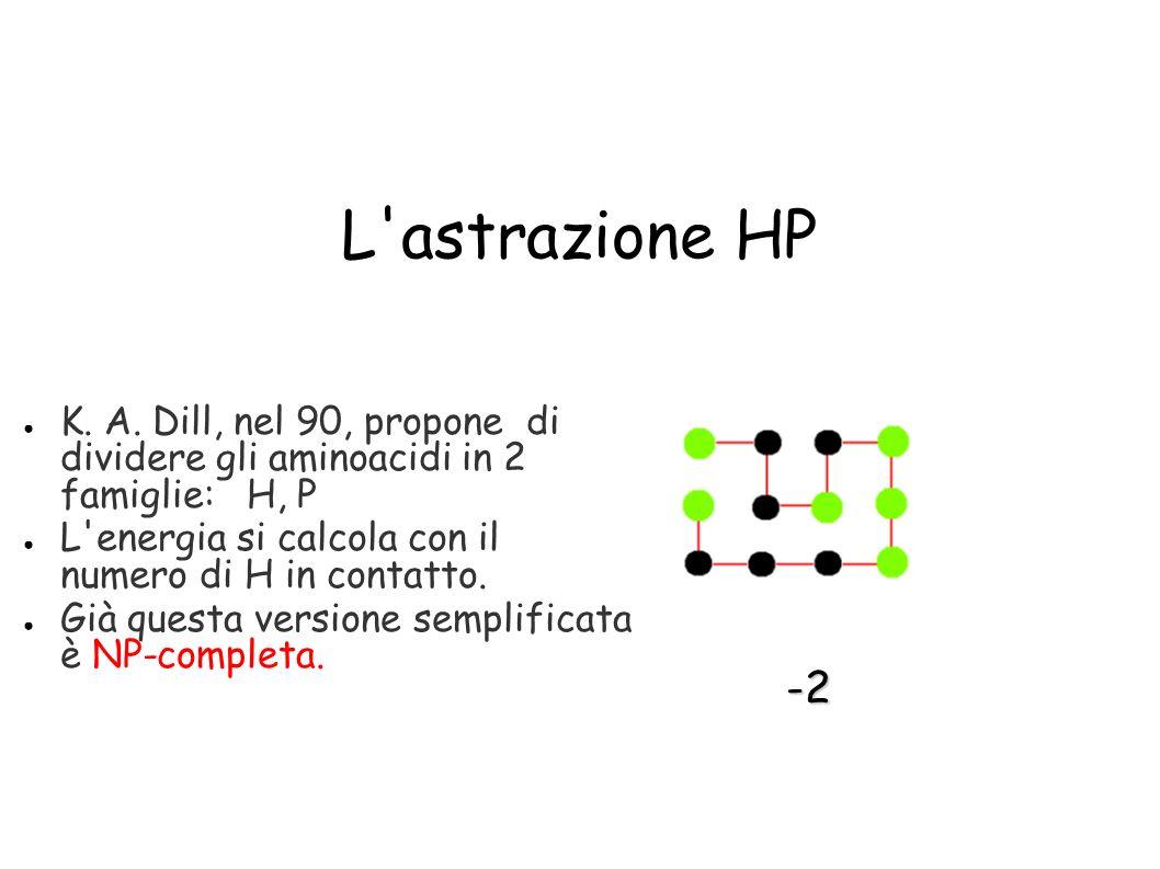 L astrazione HP K. A. Dill, nel 90, propone di dividere gli aminoacidi in 2 famiglie: H, P.