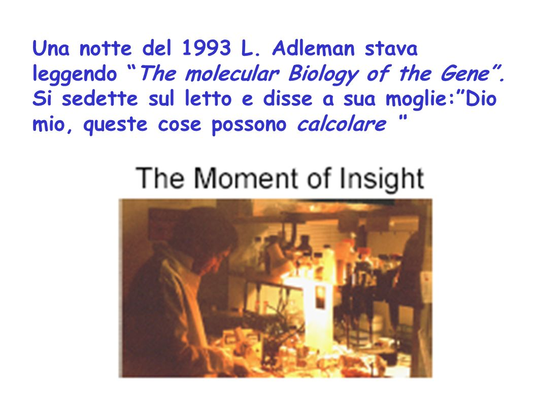 Una notte del 1993 L. Adleman stava leggendo The molecular Biology of the Gene .