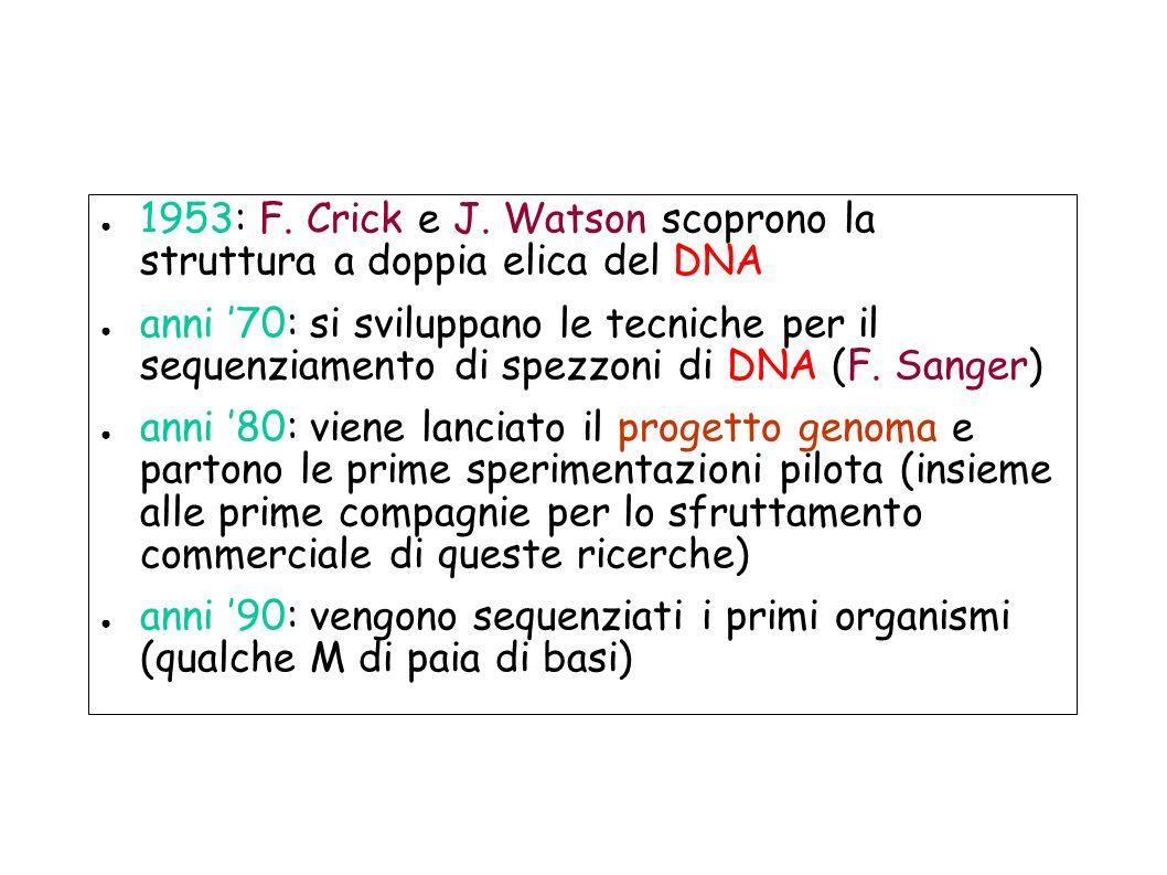 1953: F. Crick e J. Watson scoprono la struttura a doppia elica del DNA