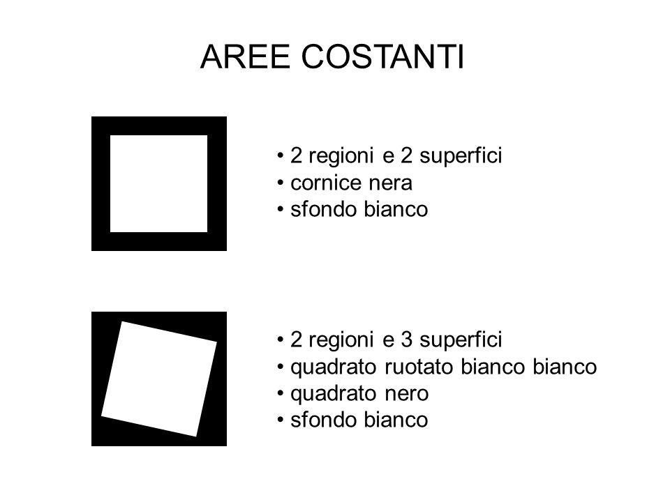 AREE COSTANTI 2 regioni e 2 superfici cornice nera sfondo bianco