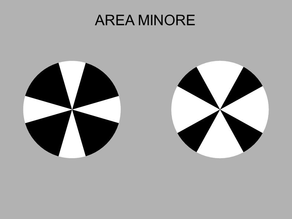 AREA MINORE