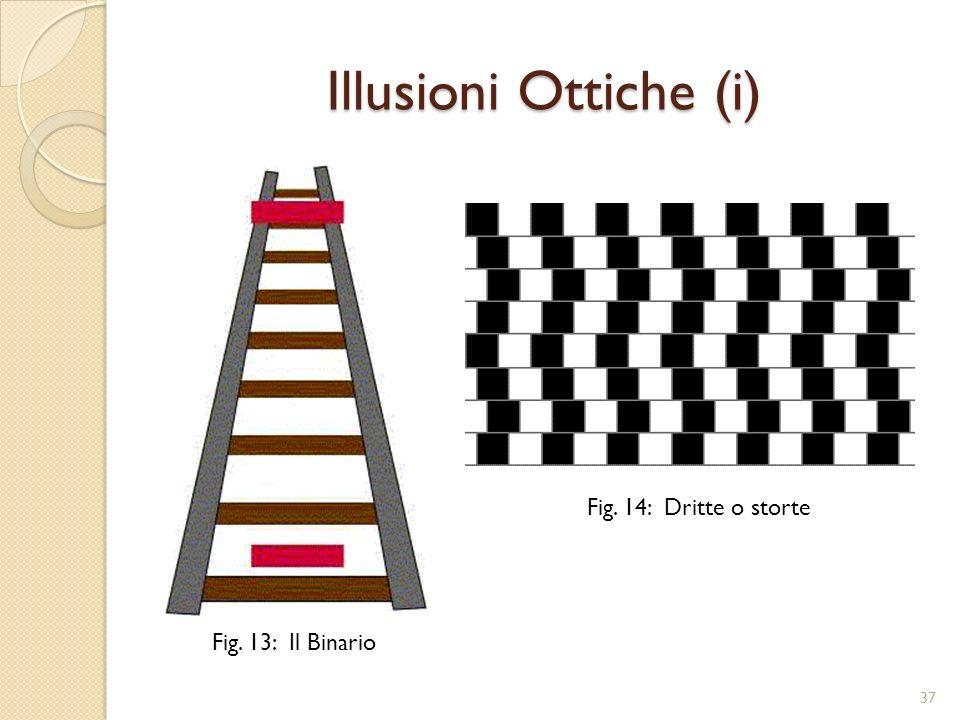 Illusioni Ottiche (i) Fig. 14: Dritte o storte Fig. 13: Il Binario