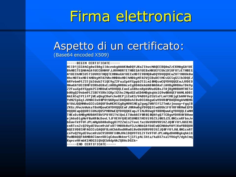 Firma elettronica Aspetto di un certificato: (Base64 encoded X509)