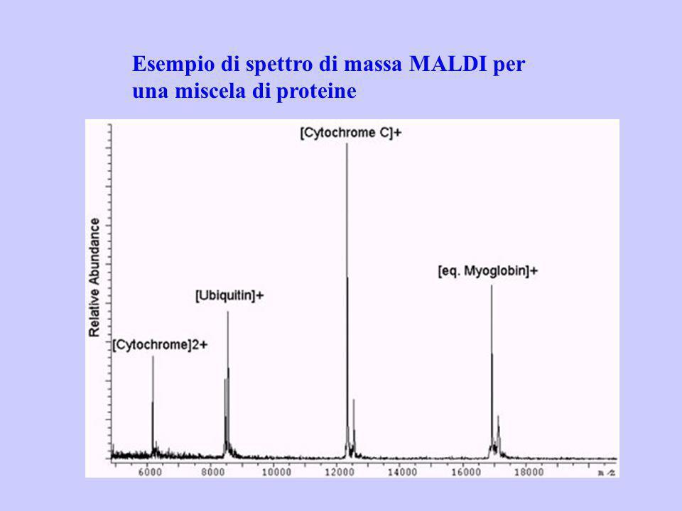 Esempio di spettro di massa MALDI per una miscela di proteine