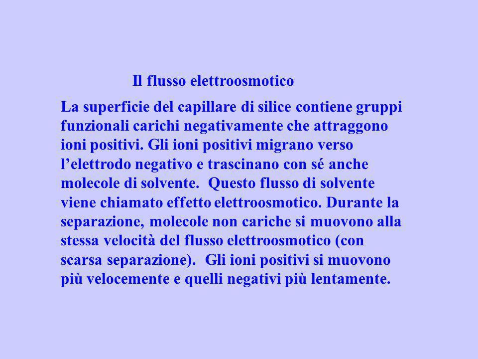 Il flusso elettroosmotico