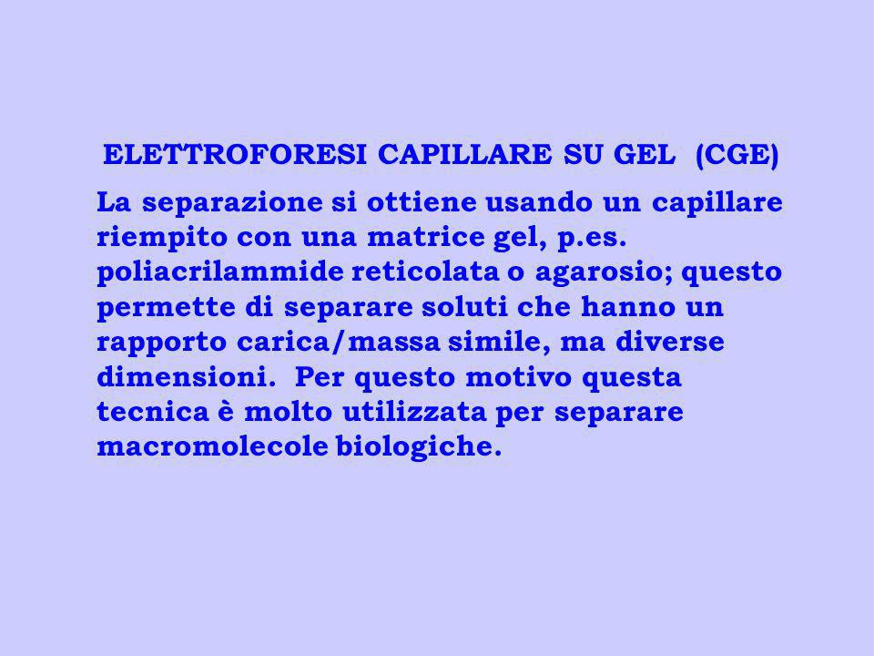 ELETTROFORESI CAPILLARE SU GEL (CGE)