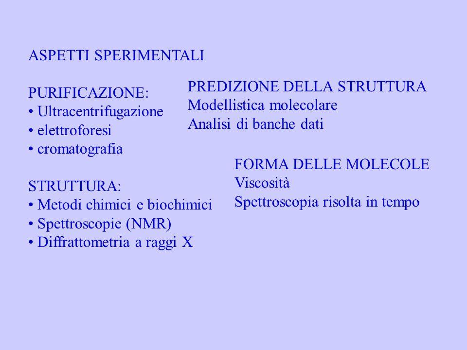 ASPETTI SPERIMENTALI PURIFICAZIONE: Ultracentrifugazione. elettroforesi. cromatografia. STRUTTURA: