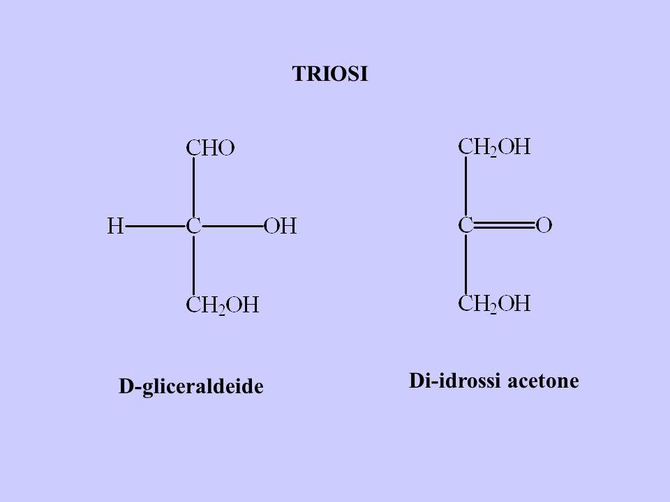 TRIOSI Di-idrossi acetone D-gliceraldeide