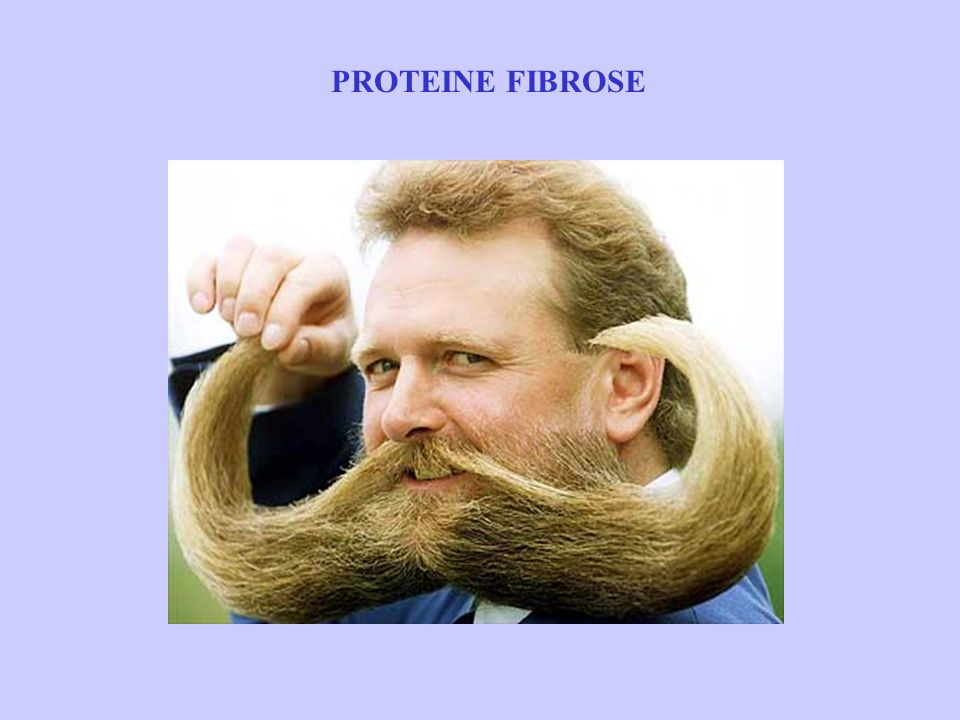 PROTEINE FIBROSE