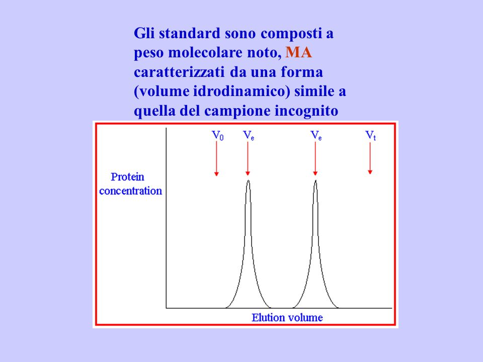 Gli standard sono composti a peso molecolare noto, MA caratterizzati da una forma (volume idrodinamico) simile a quella del campione incognito