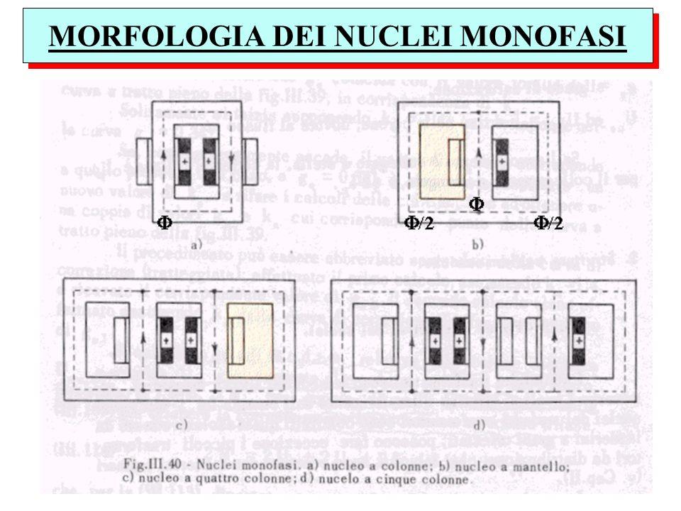 MORFOLOGIA DEI NUCLEI MONOFASI