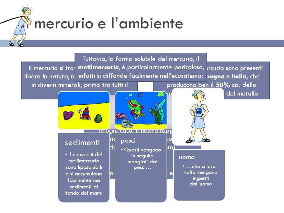 Il mercurio e l'ambiente