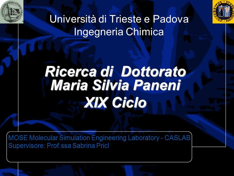 Università di Trieste e Padova Ingegneria Chimica