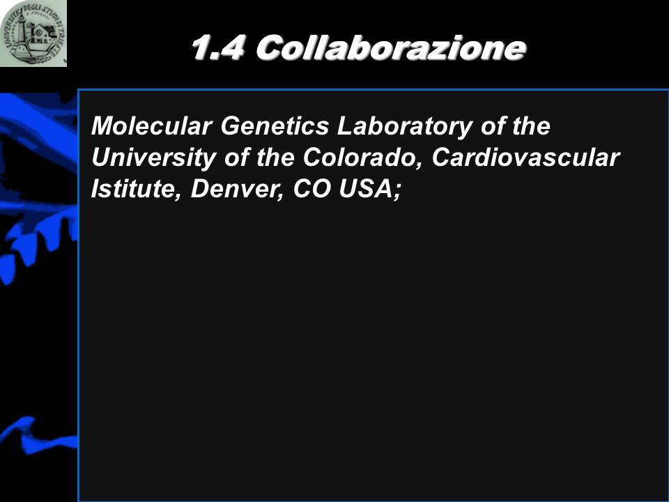 1.4 CollaborazioneMolecular Genetics Laboratory of the University of the Colorado, Cardiovascular Istitute, Denver, CO USA;