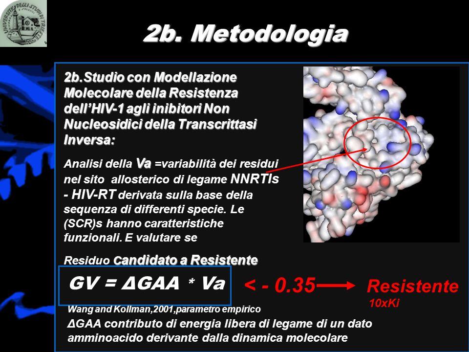 2b. Metodologia < - 0.35 Resistente GV = ΔGAA * Va