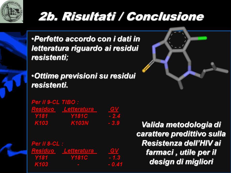 2b. Risultati / Conclusione