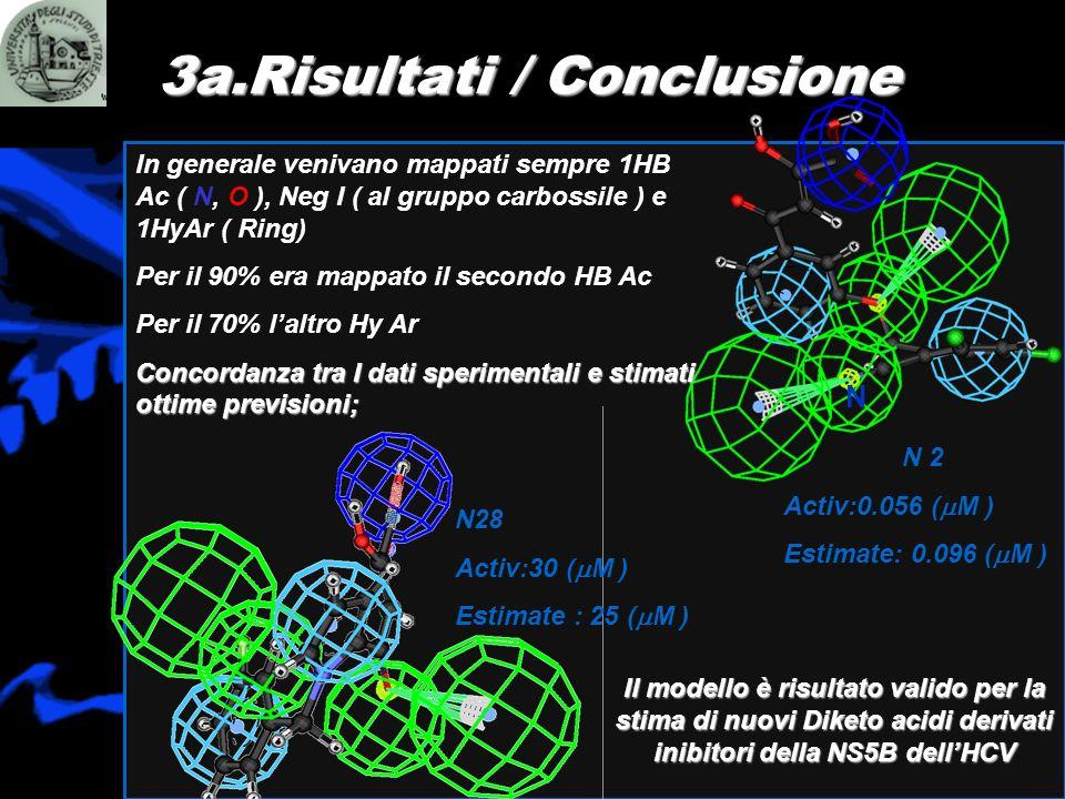3a.Risultati / Conclusione