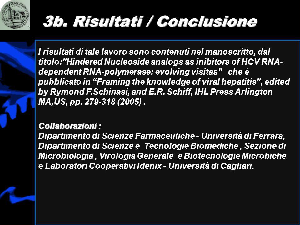 3b. Risultati / Conclusione
