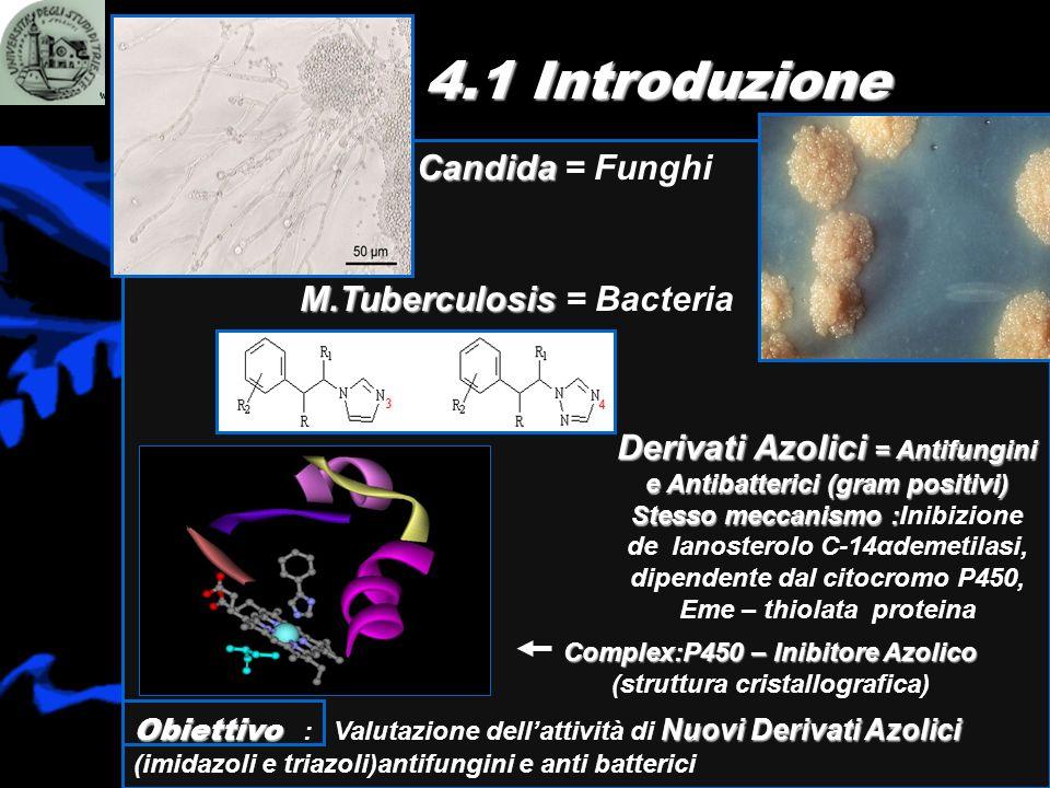4.1 Introduzione Candida = Funghi M.Tuberculosis = Bacteria