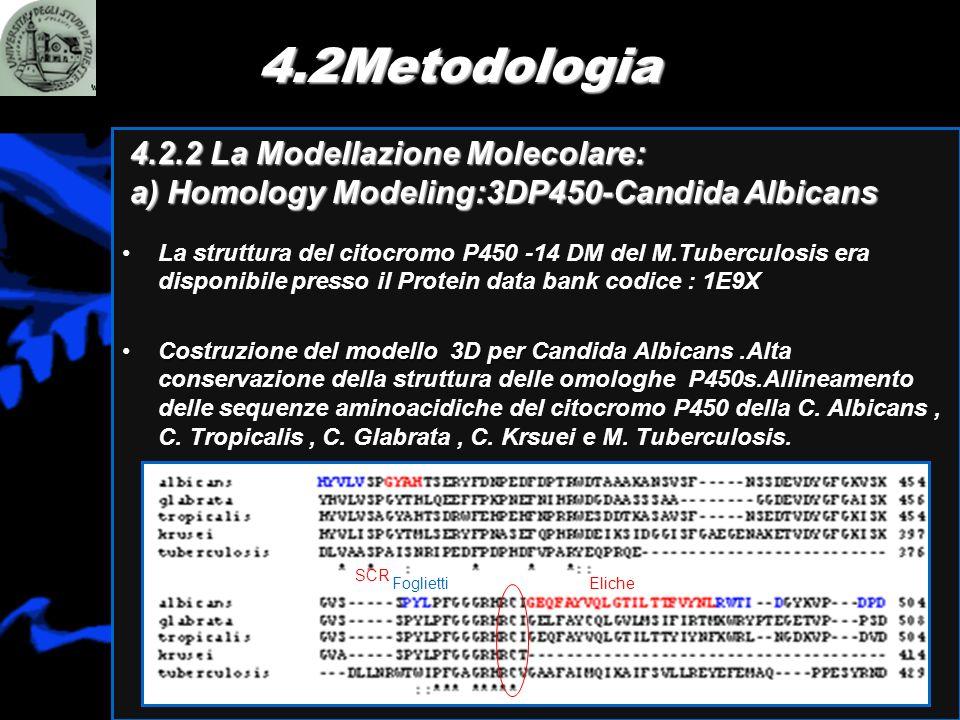 4.2Metodologia 4.2.2 La Modellazione Molecolare: