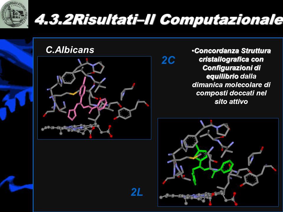 4.3.2Risultati–Il Computazionale
