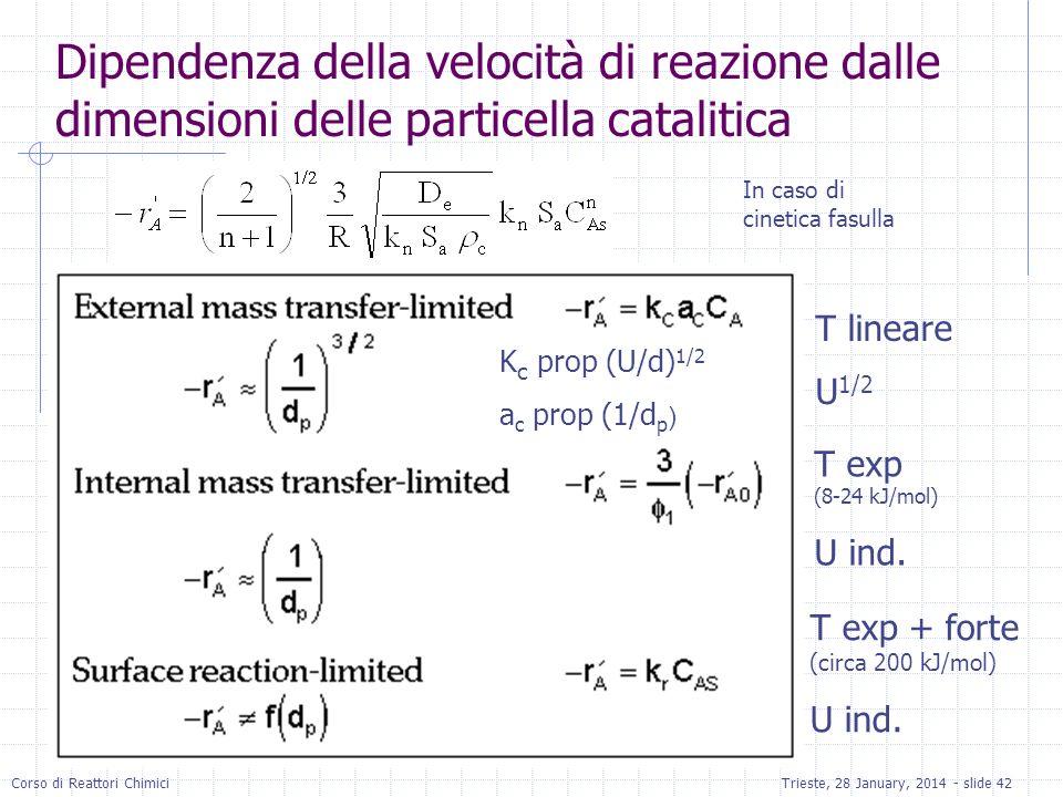 Dipendenza della velocità di reazione dalle dimensioni delle particella catalitica