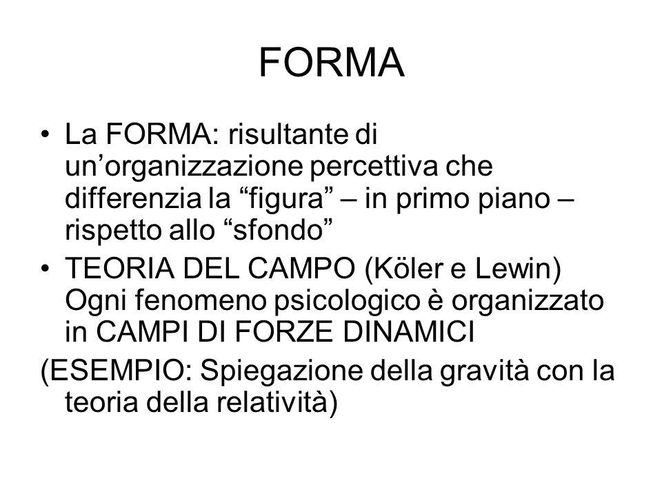 FORMA La FORMA: risultante di un'organizzazione percettiva che differenzia la figura – in primo piano – rispetto allo sfondo