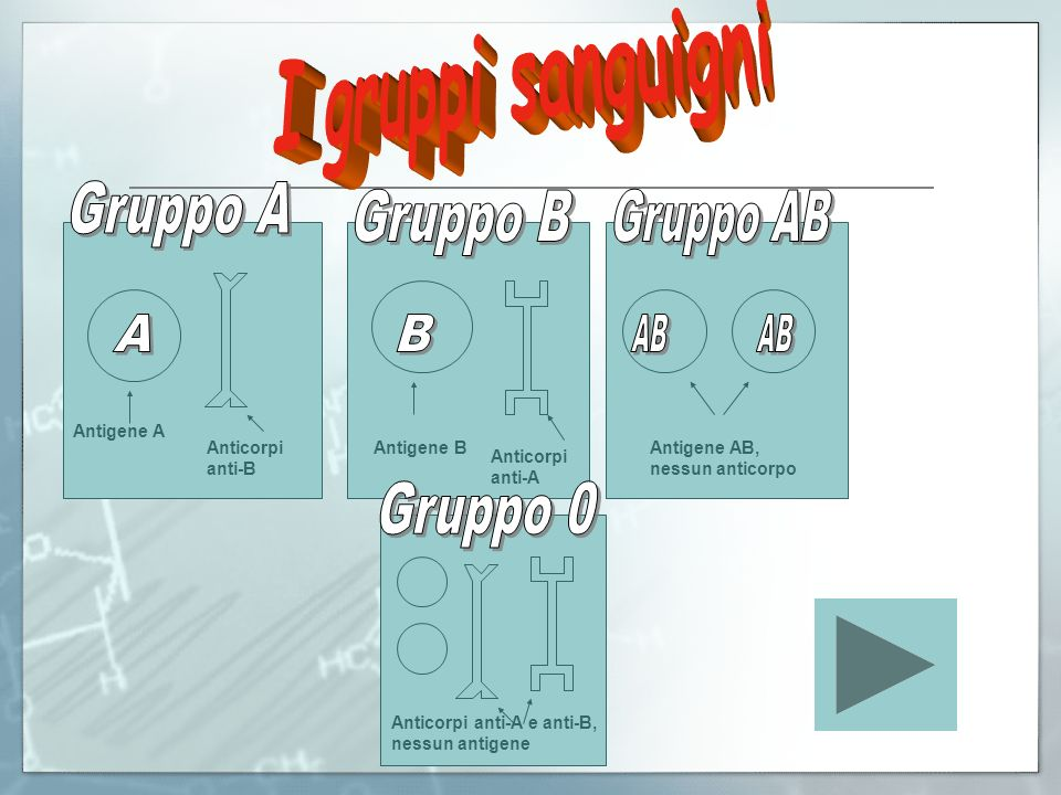 I gruppi sanguigni Gruppo A Gruppo B Gruppo AB A B AB AB Gruppo 0