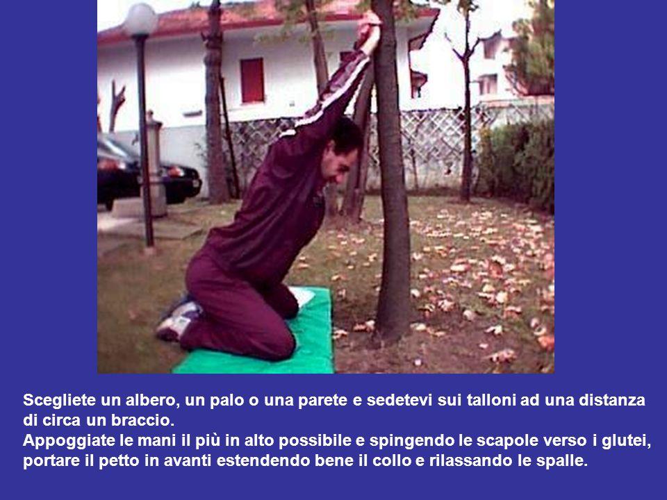 Scegliete un albero, un palo o una parete e sedetevi sui talloni ad una distanza