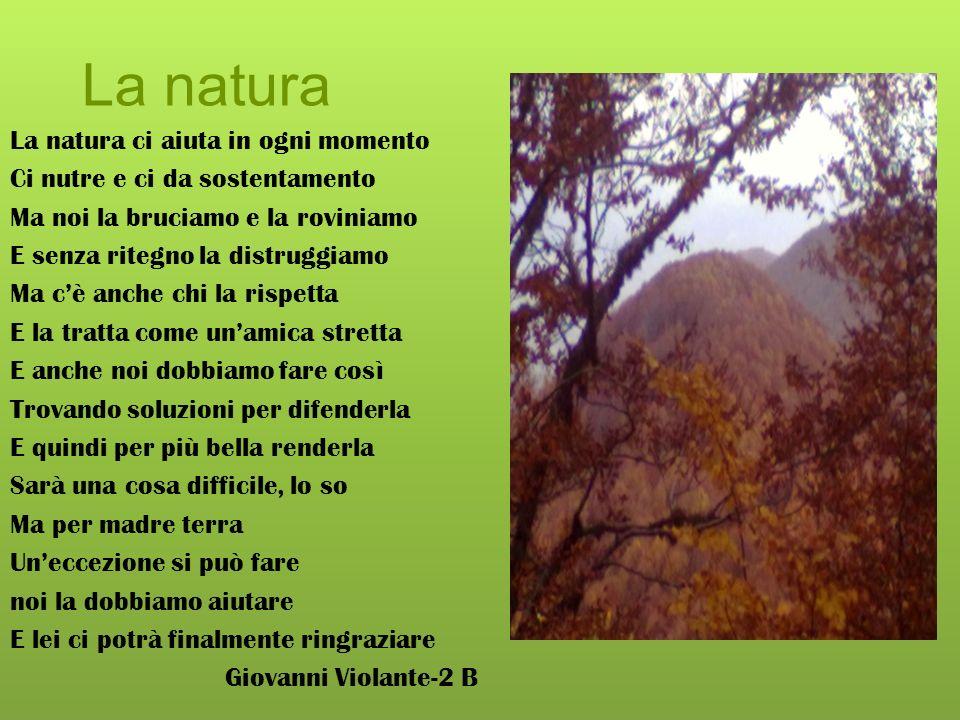 La natura La natura ci aiuta in ogni momento
