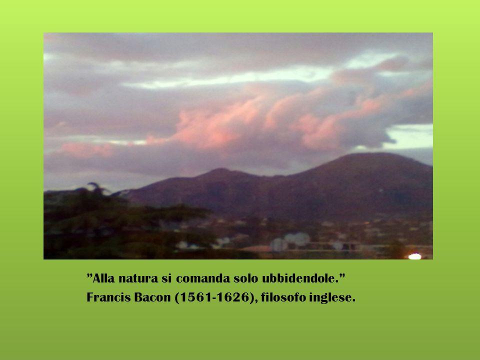 Alla natura si comanda solo ubbidendole.