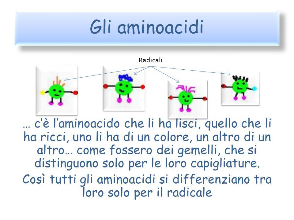Gli aminoacidi