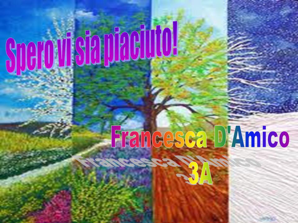 Spero vi sia piaciuto! Francesca D Amico 3A