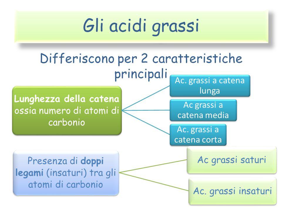 Gli acidi grassi Differiscono per 2 caratteristiche principali