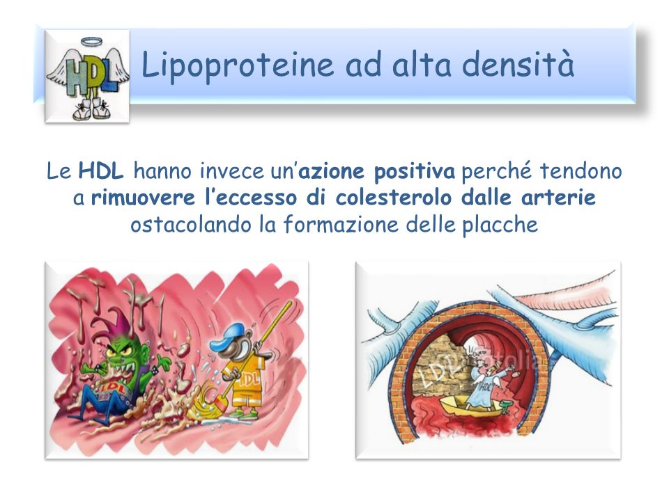Lipoproteine ad alta densità
