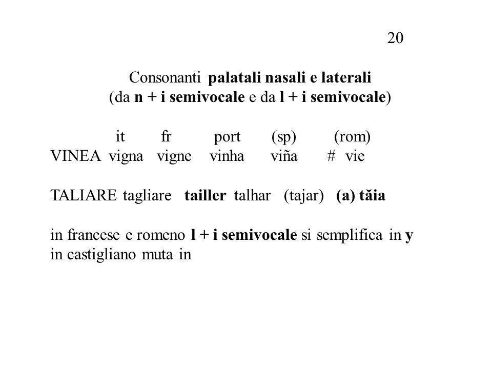 Consonanti palatali nasali e laterali