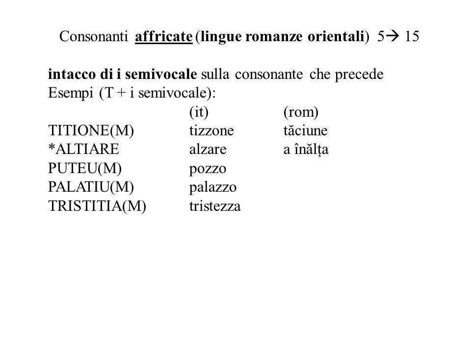 Consonanti affricate (lingue romanze orientali) 5 15