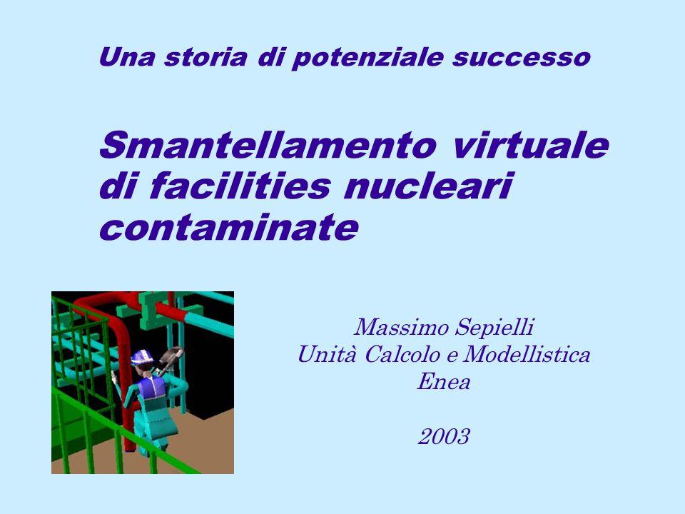 Massimo Sepielli Unità Calcolo e Modellistica Enea 2003