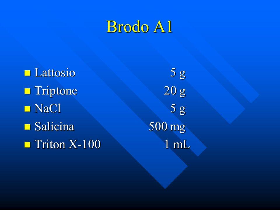 Brodo A1 Lattosio 5 g Triptone 20 g NaCl 5 g Salicina 500 mg