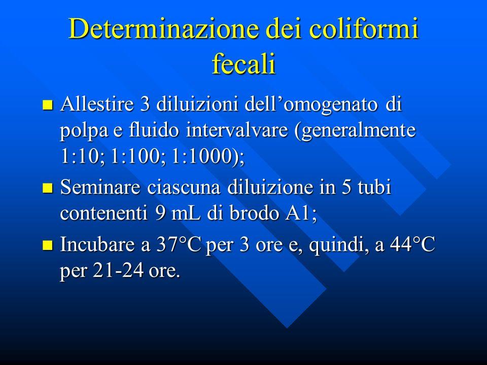 Determinazione dei coliformi fecali