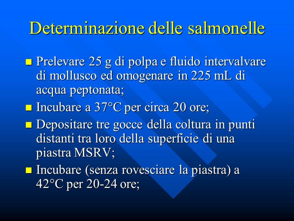 Determinazione delle salmonelle