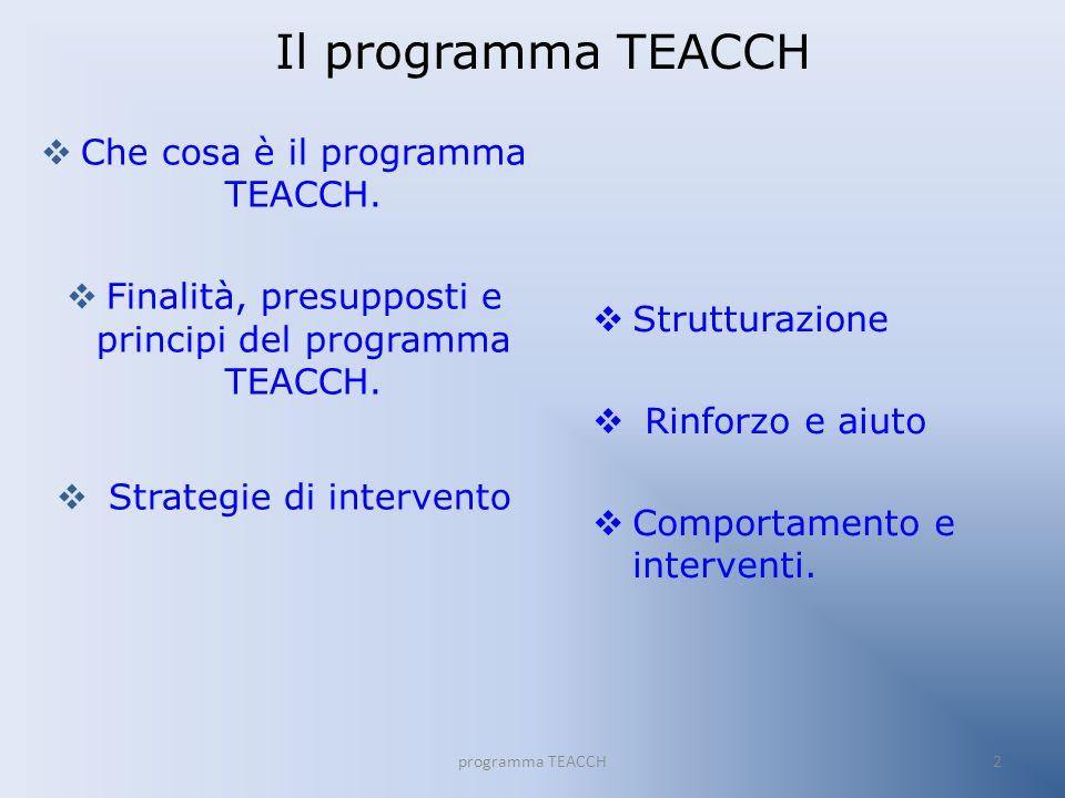 Il programma TEACCH Che cosa è il programma TEACCH.