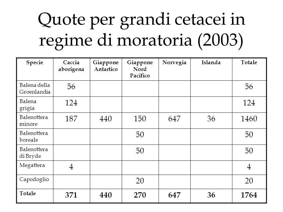 Quote per grandi cetacei in regime di moratoria (2003)