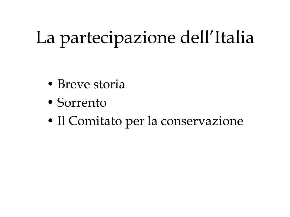 La partecipazione dell'Italia