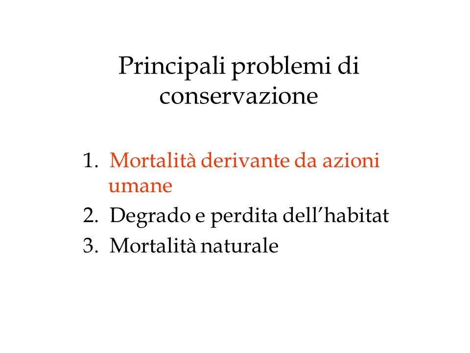 Principali problemi di conservazione
