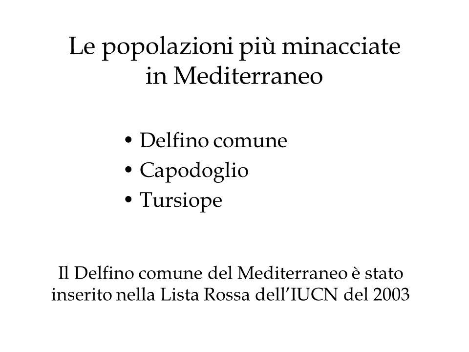 Le popolazioni più minacciate in Mediterraneo